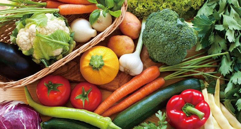 芽菜,優質且多樣植化素的攝取來源
