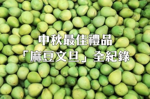 每年中秋節的最佳禮品「麻豆文旦」背後有著什麼樣的故事呢?