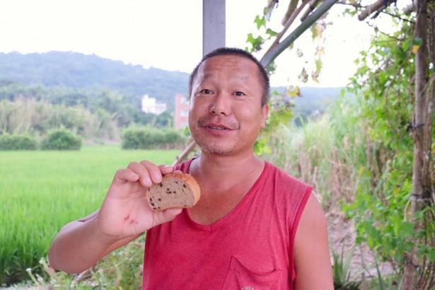 2014台灣小麥報告(1)本土小麥能與不能?