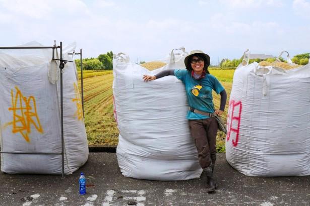 解決農村勞動力不足,背包客打工行不行?
