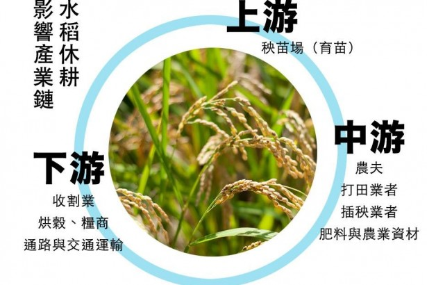 休耕面積破4萬公頃史上第二 重創水稻產業 農民:沒配套措施逼大家革命