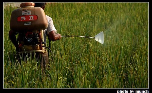 巴拉刈禁用爭議,農、學、醫界首度對話 劇毒農藥管制機制