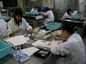 衛生檢查(提供:東京學校給食會)