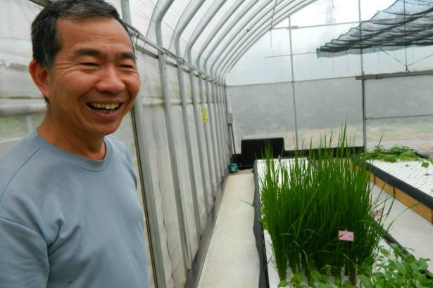 【公民寫手】台灣魚菜共生先驅- 陳登陽老師專訪