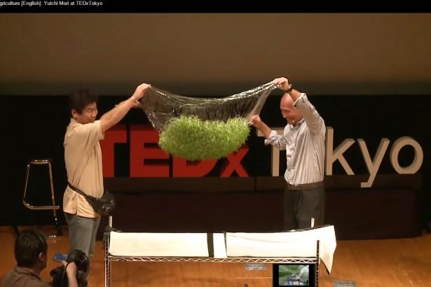 【日本通信】改變未來的創新企業(1)水凝膠膜栽培 省水節能的可持續農業