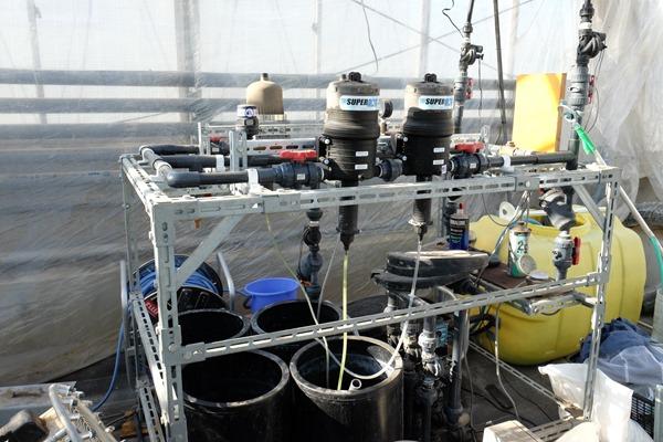 輸送養液的設備,大約可供給三千平方公尺
