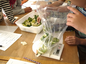 孩子們開始秤350克的蔬菜