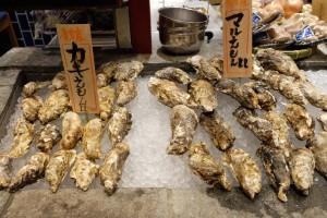 來自北海道厚岸的兩種牡蠣「かきえもん」跟「マルえもん」