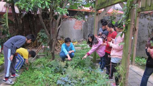 本學期食農教育的『核心概念』:讓孩子們從「農田體驗」的過程中,學習自主地「發現並解決問題」。以走出教室、踏進農田的小農夫式學習,結合做人處事態度,使孩子更能夠自然地親近土地與環境,推及自身能力的成長,進而培養興趣。
