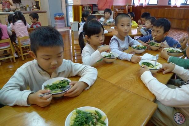 新北市團膳業者跟進 營養午餐多五元 即可供應非基改豆製品