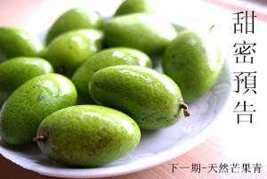link.photo.pchome.com_副本