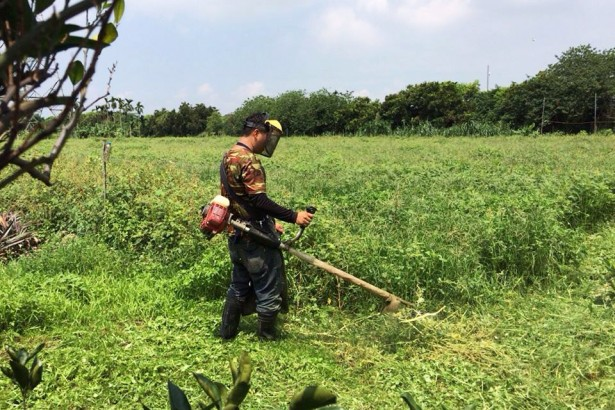 從房仲業改行種有機 百大農青盧傳期深刻體會農地天價