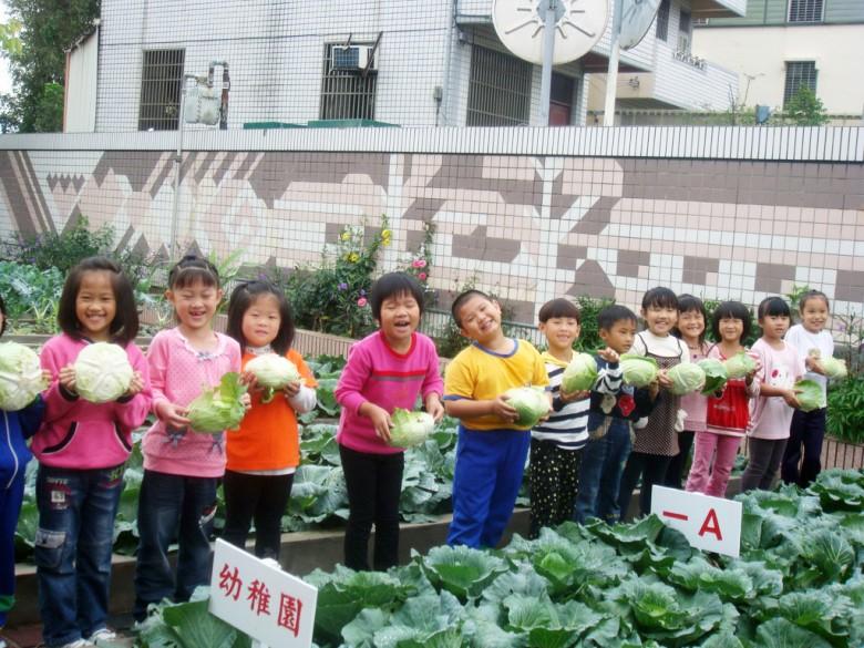 不分年級,全校一起來種菜。(新英國小提供)