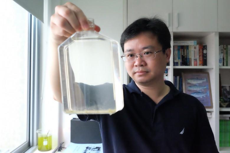 台大公共衛生學院蟲媒傳染病實驗室主持人蔡坤憲,培育劍水蚤抑制斑蚊