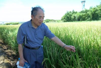 台灣水利專家、台大退休教授甘俊二。