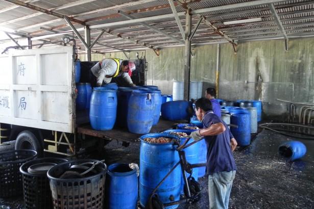 日本發酵飼料養豬 台灣是否可行?