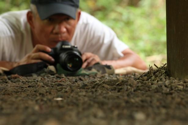 兼差打工也要記錄生態 金鐘攝影獎李偉傑《蜂台灣》大受好評