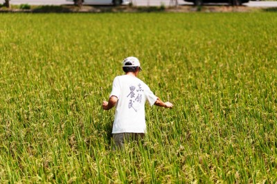 許多從農者因為老農多半只願以口頭契約出租土地,造成無法投保農保,賴青松即為一例。(圖/黃世澤攝影)