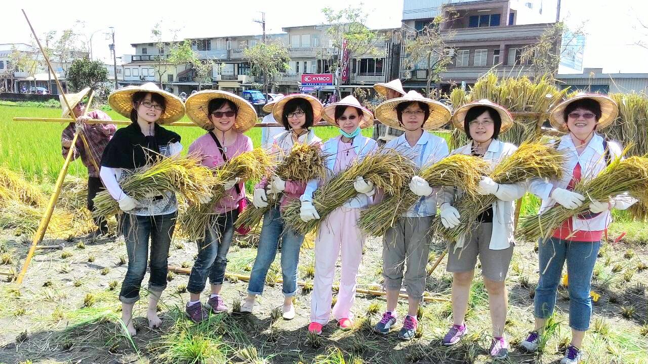 今年暑假宜蘭縣府鼓勵教師、營養師參加農糧署主辦的「食農‧食米種籽講師培訓」,讓食農教育更專業、更嚴謹。(宜蘭縣政府體育保健科提供)