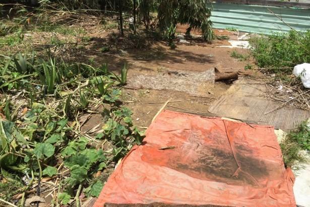 大雨過後覆蓋在土地上的帆布容易積水孳生病媒蚊。(圖片提供/台南市衛生局)