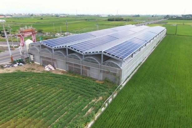 嚴審農地種電 業者資金被卡20億 立委關切