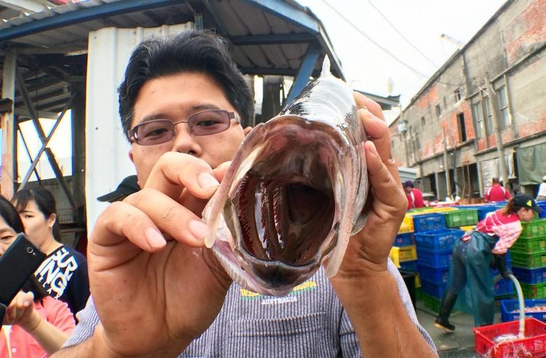 從碩士開始何宣慶就會到魚市場採集標本。(圖/何宣慶提供)