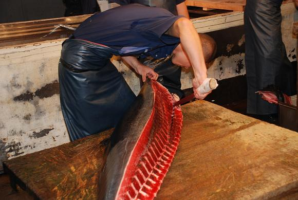 非法捕魚衝高台灣糧食自給率 歐盟發黃牌警告