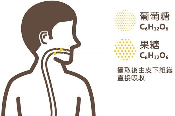 【公民寫手】蜂蜜的秘密(1) 人類為什麼需要吃甜甜?