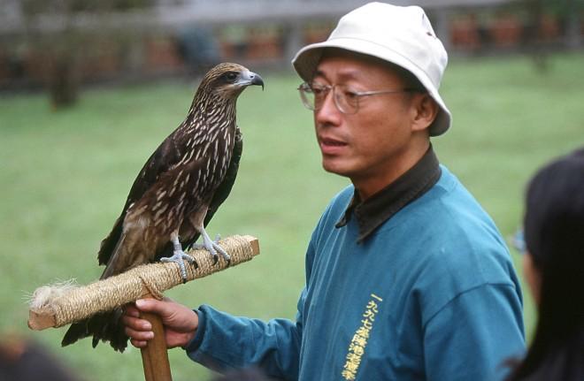 老鷹先生沈振中(圖片提供:社團法人台灣猛禽研究會)4