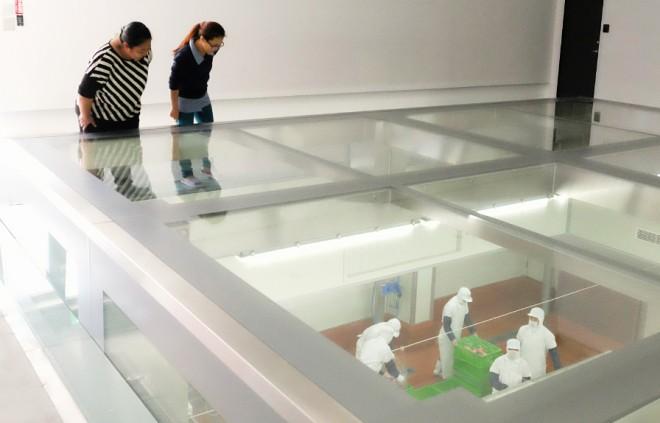 透明玻璃可一覽豬肉分切過程