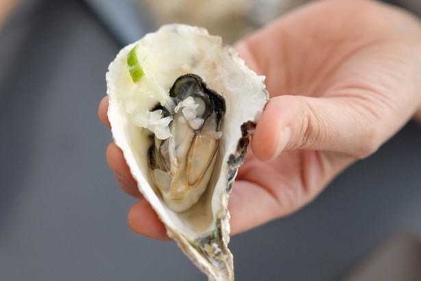 韓國生蠔遭諾羅病毒污染 夏威夷宣布回收