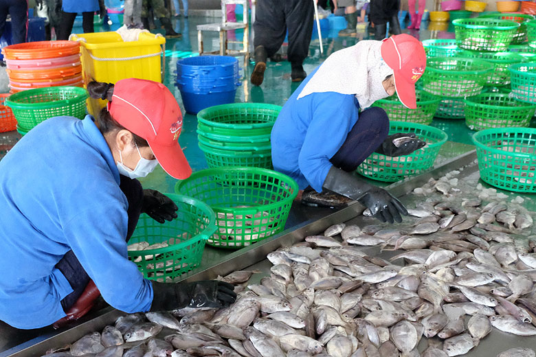 fish-market-step-01
