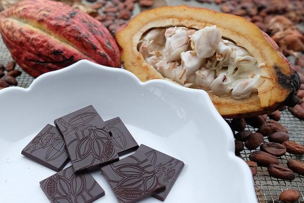 台灣本土巧克力 可可公主愛屏東
