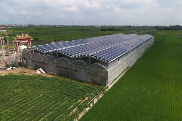 農地種電難認定 業者呼籲光電和農業脫鉤