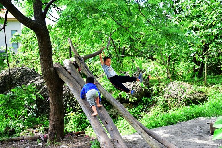 在母語共學園中,孩子可以自在地爬樹、探索環境,讓母語紮實地用在生活中。(圖/潘子祁攝)