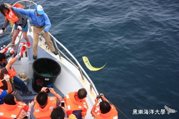 【公民寫手】2016黑潮海洋大學 ──【討海人v.s.鬼頭刀】