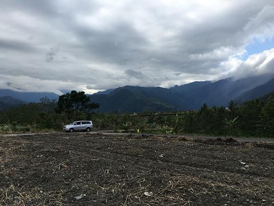 靜下來看看我們投入推廣油茶產業的這片土地,想像未來油茶樹長大後,這裡的山景風景,一定非常美麗。