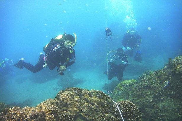 珊瑚礁垃圾纏身 募集熱血潛水夫下海