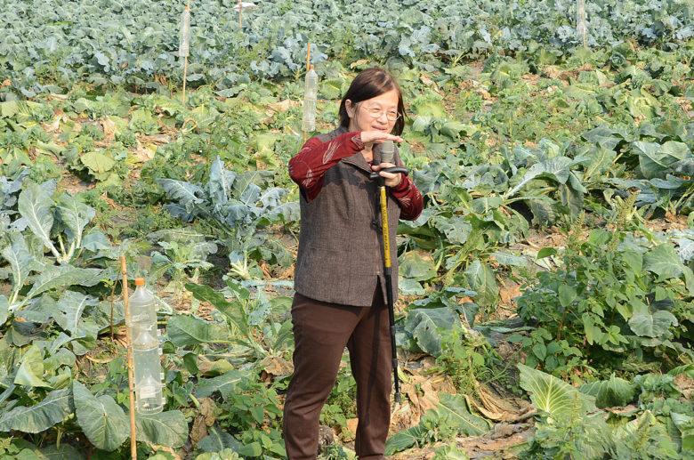 到田裡和農友示範、推廣,甚至爭取合作、實驗機會,是洪巧珍的重點工作。(圖/洪巧珍提供)