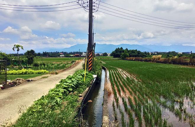 隨著溝渠大林埤塘的水源灌溉嘉義農田(攝影/郭琇真)