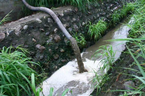 豬屎豬尿直接排進水溝造成嚴重汙染。