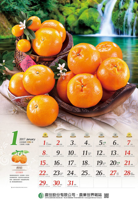 精心尋找最完美的水果入鏡