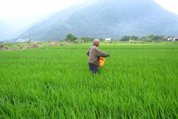 【公民寫手】有機島之路-4:直接找農夫種-真正有機的消費運動(實踐篇)