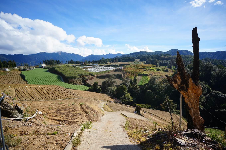 高山上,表土裸露的菜園(圖片提供_苦瓜)JPG