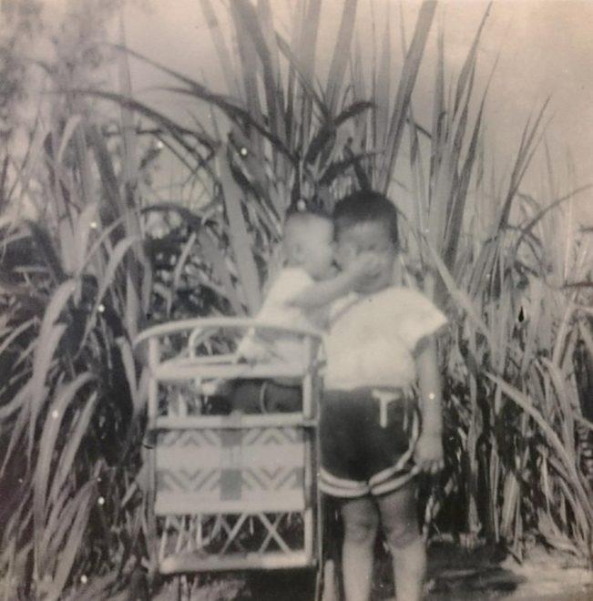 農村孩童於甘蔗園玩耍。該圖攝於1960-1970年代。西部平原常見的作物─甘蔗,其各部位常被作為燃料。