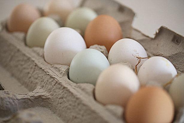 局長說:可以賣散裝蛋,但是運送販賣都要用一次性包材
