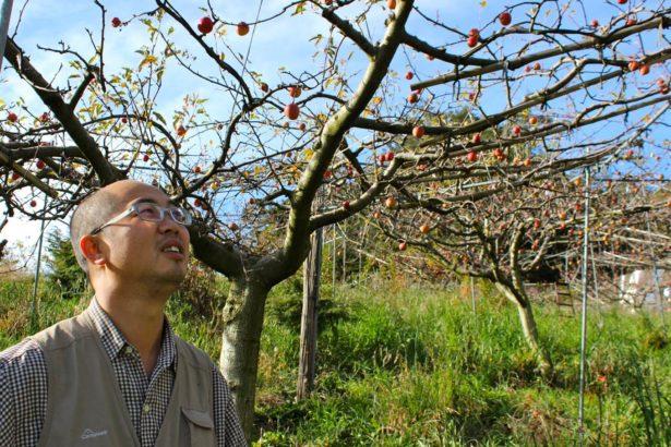惜別了,苦瓜和阿凱的誠實蘋果
