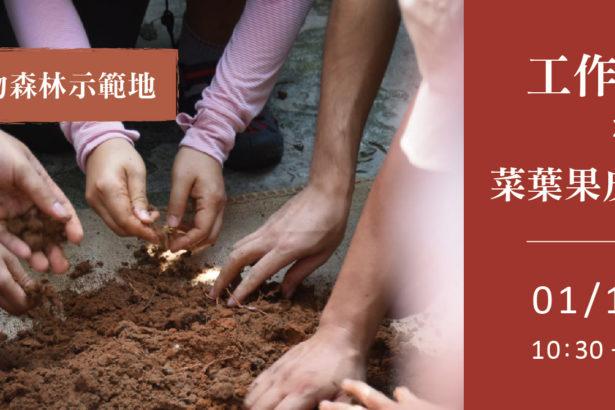 【公民寫手】01/16【新竹市食物森林】工作派對 x 菜葉果皮大變身