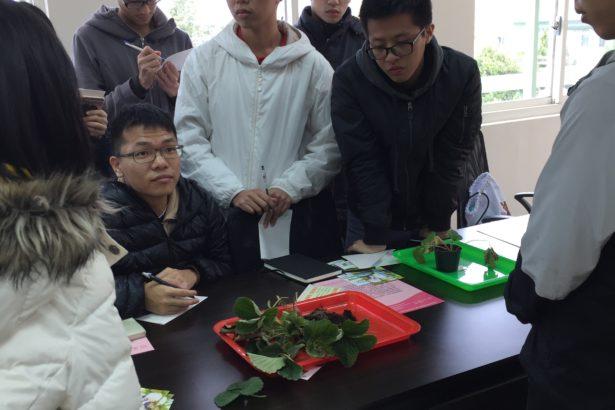 植物醫學的修業學生,都必須經過完整的植物病因診斷訓練,作為將來業務執行的基礎。