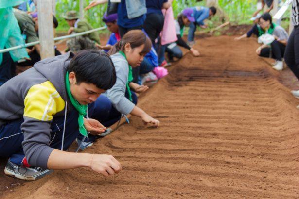 TNEa /從鋤頭到筷子─專業有效的食農教育教案 師資培訓